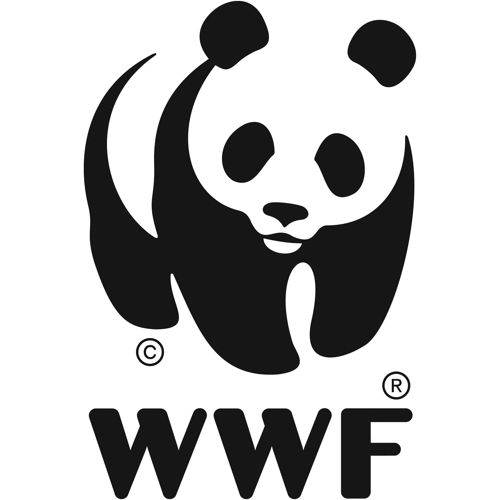 FAVPNG_world-wide-fund-for-nature-wwf-madagascar-logo-conservation-wwf-adria_H876S9cc.png